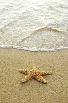 Beach Canvas, Beach Art, Beach Pictures, Print Pictures, Beach Images, Best Digital Slr Camera, Best Dslr, Vsco, Beach Aesthetic