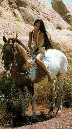 Cher and Appaloosa