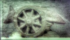 cykl pancerniki ryba -szamot szkliwiony