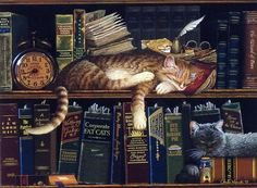 Charles Wysocki Cat in Library Book stacks picture