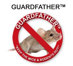 How to get rid of mice using mothballs mice ccuart Images