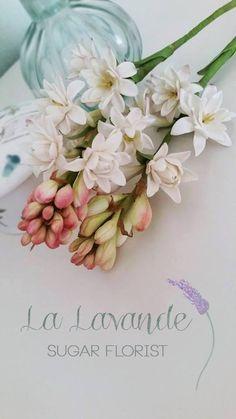 Sugar Tuber Rose | La Lavande Sugar Florist