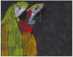 Parrots by Matthew (age 6)