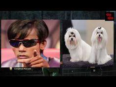 Bangladeshi Super Star Alom || PolKhol Videos ||
