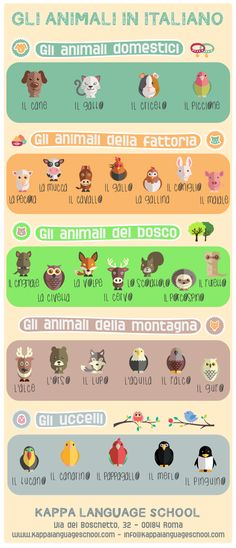 Learn Italian words: animal names, an infographic!
