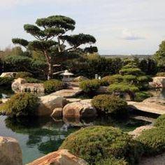 Popular Garten Gartengestaltung Ideen und Bilder