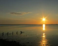 Sunset, low tide, Northern Sea, via Flickr  © Julia etc. * p_OO_f *™ - All rights reserved and all pictures watersigned.