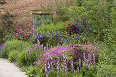 This attractive and popular 'Purple Border', fronting an old brick wall is a real showstopper with its exquisite combinations of lupines, roses, clematis and hardy geranium.... Read more: http://www.jardins-sans-secret.com/gardens/a-famous-purple-border/