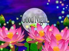 Good Night Images with flowers and nature - PIX Trends Sweet Good Night Images, Sweet Dreams Images, Good Night To You, Photos Of Good Night, Good Night Sweet Dreams, Good Night Quotes, Happy Akshaya Tritiya Images, Happy Diwali Images, Happy Karwa Chauth Images
