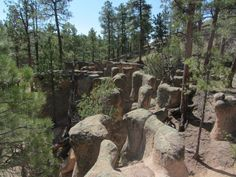Easy hikes are great, but an easy hike that takes you to otherworldly sites is even better. See what to expect on your hike to the Paliza Goblin Colony. New Mexico Road Trip, Travel New Mexico, Mexico Vacation, Vacation Spots, Tennessee Vacation, Mexico Trips, Oh The Places You'll Go, Places To Travel, Places To Visit