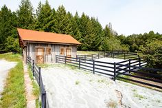 Small rustic horse barn made with recycled materials.