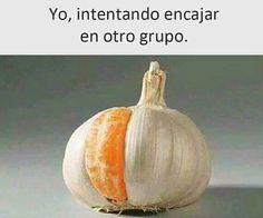 IMÁGENES GRACIOSAS PARA WHATSAPP #memes #chistes #chistesmalos #imagenesgraciosas #humor #funny #amusing #fun #lol #lmao #hilarious #laugh #photooftheday #friend #crazy #witty #instahappy #joke #jokes #joking #epic #instagood #instafun