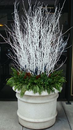 35 Festive Outdoor Holiday Planter Ideas To Decorate Your Front Porch For Christmas Winter White Branches With Evergreens Christmas Urns, Outdoor Christmas Decorations, Rustic Christmas, Winter Christmas, Christmas Home, Christmas Wreaths, Christmas Crafts, Winter Porch, Christmas Ideas