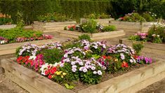 Backyard flower garden ideas here is a series of raised garden beds backyard raised garden ideas backyard raised garden bed plans Raised Garden Beds, Garden Stand, Backyard Flowers Garden, Garden Ideas To Make, Backyard Raised Garden Beds, Flower Garden, Garden Ideas Cheap, Raised Flower Beds, Large Backyard