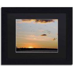 Trademark Fine Art Seagull Sunset Canvas Art by Kurt Shaffer, Black Matte, Black Frame, Size: 11 x 14, Multicolor