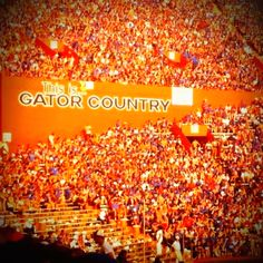 LOVE!!! The home of Will Muschamp!