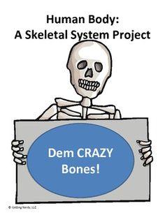 Human Body: Skeletal System Project- Build a Skeleton