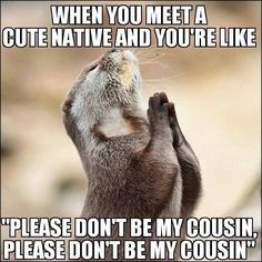 Please don't be my cousin.   Native News http://ibeebz.com