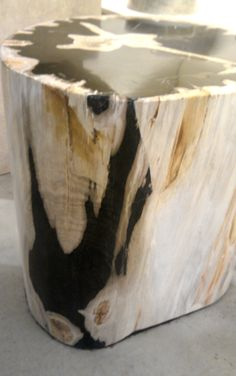 Petrified wood stool- or end table.  Love this!