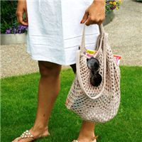 FREE Knitted Beach Bag