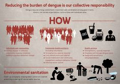 Why we are all accountable for dengue's economic burden