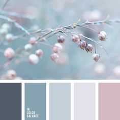 Winter Pastel & Dusty Neutral Color Palette