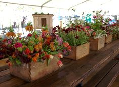 Really liking these wild flowers spilling out of the beautiful wooden containers. Really lovely.