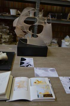 Documentatiemappen, foto's en werk van Monique. Opstelling opendeur juni'15.