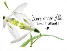 Conseils plantes - Conseils et astuces plantes - Jardinerie TRUFFAUT