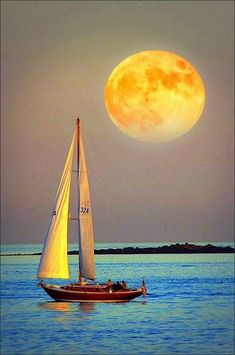 A boutique cruise is a unique sailing experience that will take you to places you never imagine on a comfortable home-like ship. Cool Photos, Beautiful Pictures, Sailboat Painting, Boat Art, Moon Pictures, Beautiful Moon, Beautiful Landscapes, Sailing Ships, Nature Photography