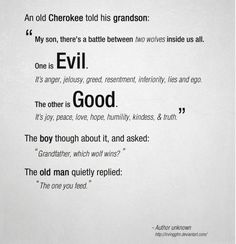 Good or Evil.... which will you feed.