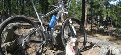 The Storm Mountain trail provides plenty of climb, descents, rocks and wandering through the Black Hills National Forest. Don't forget to bring the bikes/pups!
