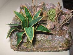 Foro de Belenismo - Vegetación -> pequeñas plantas