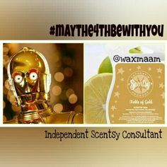 The name says it all... Both C-3PO and Fields of #Gold have fabulous golden notes with an #exotic flair. (#C-3PO does speak several dialects.)  #maythe4thbewithyou #scentsy #waxmaam