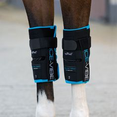 Horseware ICE-VIBE Knee Wraps are perfect for any equine athlete! These rechargeable boots provide a cooling and massaging effect that encourages movement of the lymphatic system, drains inflammation & stimulates repair to the damaged tissue.