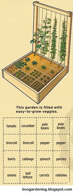 Urban Gardening Ideas Small garden design perfect for an urban garden or small spaces. I never thought of putting a trellis on a balcony! - 10 Square Foot Gardening Ideas you can use no matter where you live! Small Gardens, Outdoor Gardens, Raised Gardens, Farm Gardens, Starting A Vegetable Garden, Vegetable Gardening, Veggie Gardens, Vegetables Garden, Vegetable Design