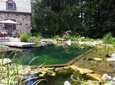 Natural swimming pool landscaping - John's Pools & Ponds, ON - BioNova