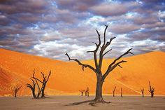 Namib Desert Time Lapse, Namibia by Martin Harvey. Time lapse of desert landscapes in Namibia.