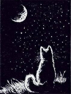 Black Paper Drawing, Scratchboard Art, Scratch Art, Cat Drawing, Chalk Art, Art Techniques, Rock Art, Art Projects, Beautiful Artwork