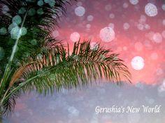 Garden Orbs  photograph photography orbs palm by GerushiasGarden