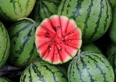 Nothing says summer like watermelon! Earlier this month, a group of eight watermelon and cantaloupe farms became the first to achieve Rainforest Alliance Certification in Costa Rica. Photo by Denish C.