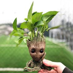 """urbnbullshitters: """" If you didn't get your fill of the adorable Baby Groot in Guardians of the Galaxy Vol. then this Baby Groot flower pot is just for you. This little seven inch tall Baby Groot. Baby Groot, Canada Day, Flower Vases, Flower Pots, I Am Groot, Flower Skull, Anime Kawaii, Plant Holders, Guardians Of The Galaxy"""