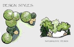 Drawing Of A Naturalistic Style Planting Plan And Section With Landscape Architecture Tree Drawings Landscape Architecture Drawing, Landscape Sketch, Landscape Design Plans, Landscape Drawings, Architecture Plan, Landscaping Design, 3d Landscape, Architecture Diagrams, Landscape Architects