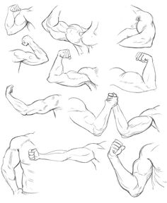 Arm Life Drawing Practice by Temiree on DeviantArt