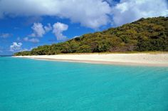 """Buck Island is a small, uninhabited, 176 acre (712,000 m²) island about 1.5 miles (2.4 km) north of the northeast coast of Saint Croix, U.S. Virgin Islands. It was first established as a protected area by the U.S. Government in 1948, with the intention of preserving """"one of the finest marine gardens in the Caribbean Sea."""