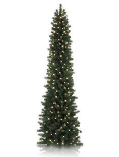 Balsam Hill Napa Christmas Signature Sonoma Slim Pencil Artificial Christmas Tree – Lights L Skinny Christmas Tree, Pencil Christmas Tree, Christmas Tree Sale, Purple Christmas, Christmas Love, Xmas Tree, Christmas Tree Decorations, Christmas Scenery, Christmas Ideas