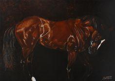 The Contender - James C Byrne Equine Art Horse Farms, Equine Art, Beautiful Horses, Saatchi Art, Original Paintings, Artist, Prints, Photograph, Shop