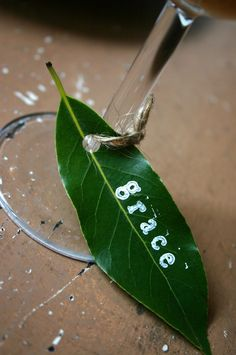 Fresh bay leaves stamped with a name - these are wine charms but I'd use them as place cards--too cute!  #holiday #tablescapes #crafts