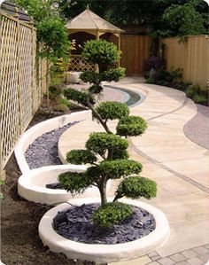 Curves pathway and Circle planters leading to my meditation space... Side yard maybe?