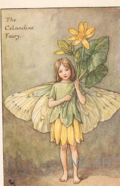 Antique Childrens Print, Fairy Print, 1920s Kids Print, Barker Fairies, Vintage Childrens Decor Print Wall Hanging, Celandine Poppy Fairy via Etsy